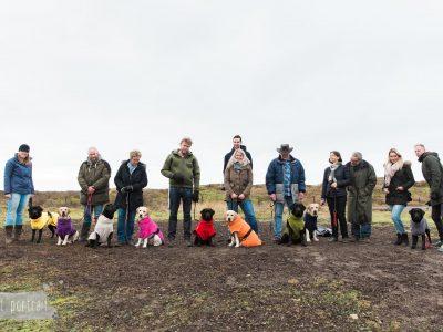Hondenbadjassen tijdens de Labradors of Asgard's Hope puppyreunie